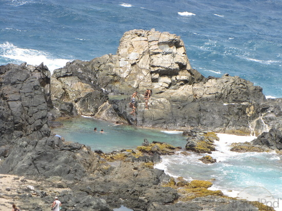 Amazing Pools in Aruba