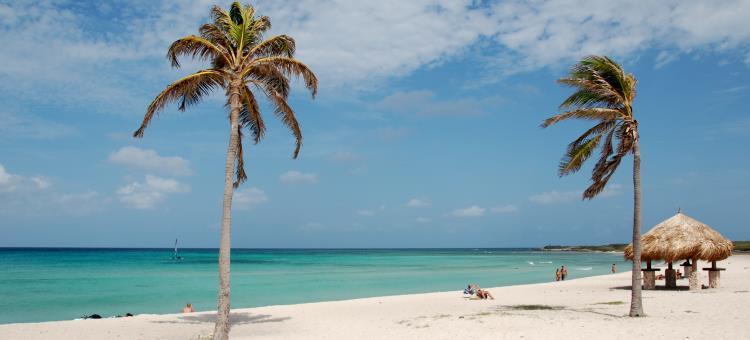 Beautiful View of Arashi Beach Aruba