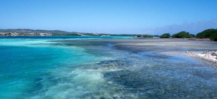 Stunning Mangel Beach Aruba