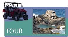 take inall of Aruba On Sunrise Tours